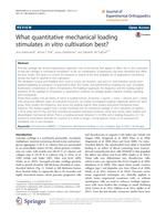 What quantitative mechanical loading stimulates in vitro cultivation best?