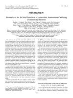 Biomarkers for In Situ Detection of Anaerobic Ammonium-Oxidizing (Anammox) Bacteria