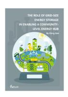 The role of grid-size energy storage in enabling a community-level energy hub