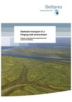 Sediment transport in a fringing reef environment: Analysis using laboratory experiments and numerical modelling