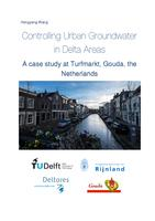 Controlling urban groundwater in delta areas