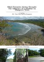 Blind estuaries during drought: The influences of a sandbar on mangrove trees