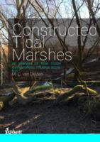 Constructed Tidal Marshes