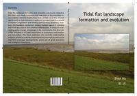 Tidal flat landscape formation and evolution