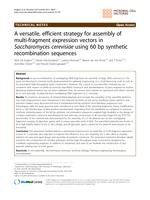 A versatile, efficient strategy for assembly of multi-fragment expression vectors in Saccharomyces cerevisiae using 60 bp synthetic recombination sequences