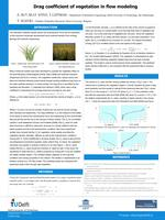 Drag coefficient of vegetation in flow modeling