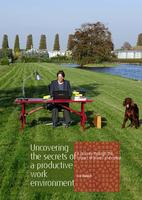 Uncovering the secrets of a productive environment, A journey through the impact of plants and colour